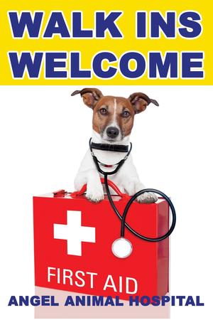 Management Pet Flea With Frontline Plus