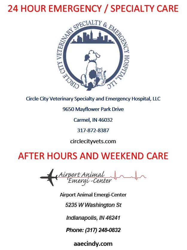 Animal Emergency & After Hours Care_Angel Animal Hospital